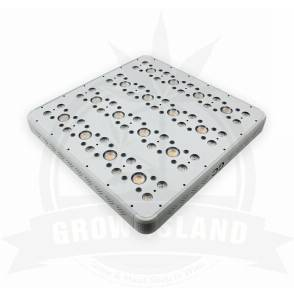 gc_16_plus-growisland-growshop